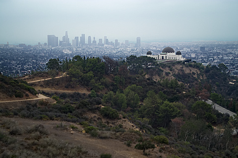 Griffith Observatory from Mt. Hollywood