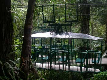 Dominica rainforest trolly