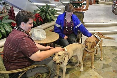 seeing eye dogs aboard